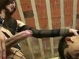 Shemale mistress fucks dude as sex slave in toilet